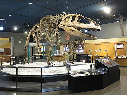 マプサウルスの全身復元骨格