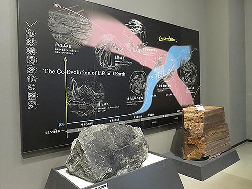 地球環境変化の歴史を伝えるパネルと岩石